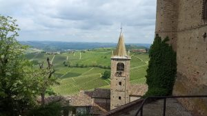 Best Times of the Year for Wine Tours in Europe