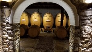 Visit the Collio wine area of Friuli