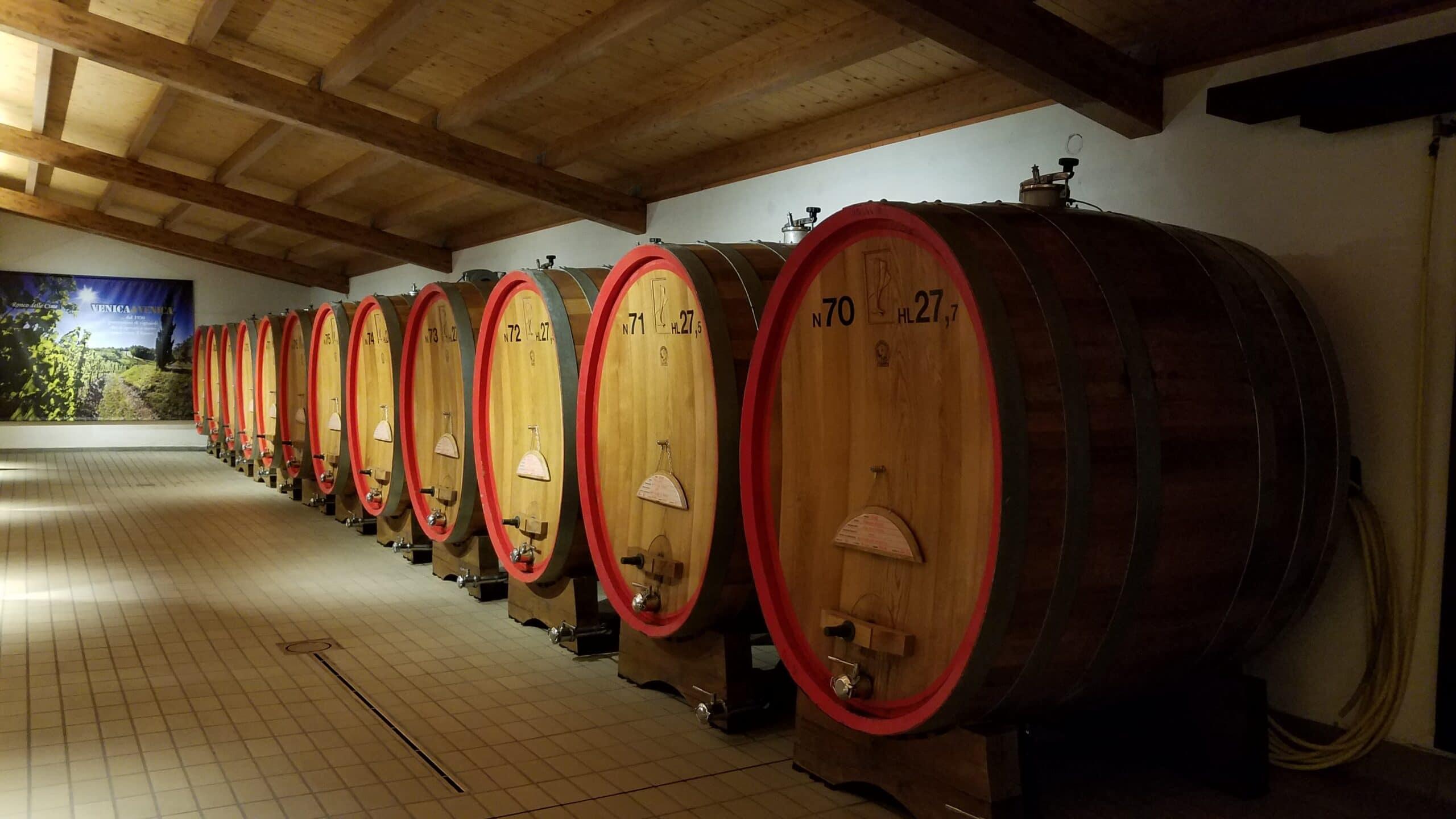Collio wine region in Friuli