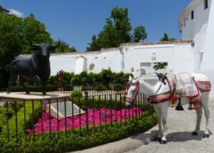 guided tour of ronda